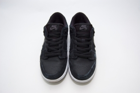 Wairtesting the Nike SB Dunk Low Pro IW